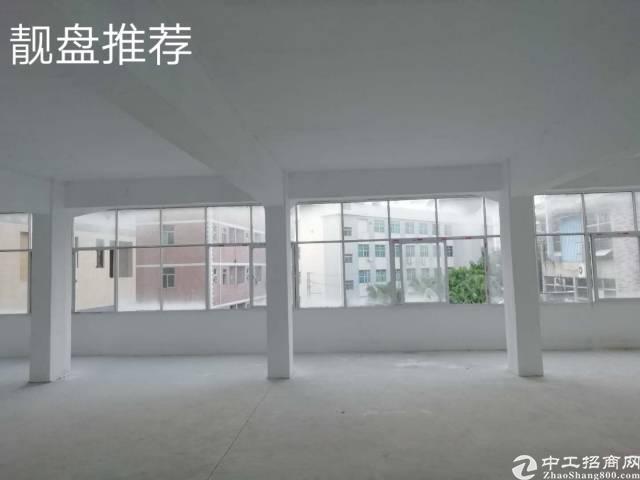 凤岗镇雁田村全新装修三楼厂房320平米采光明亮全新装修