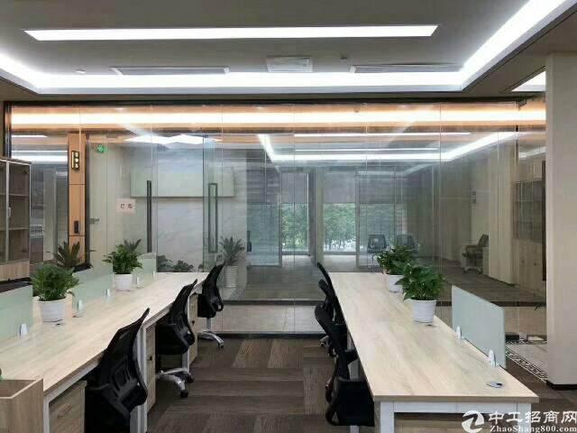 物业直租 家私齐全 拎包办公 双面采光 综合办公图片5