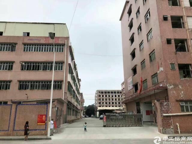 东莞厚街新出厂房整栋9800平