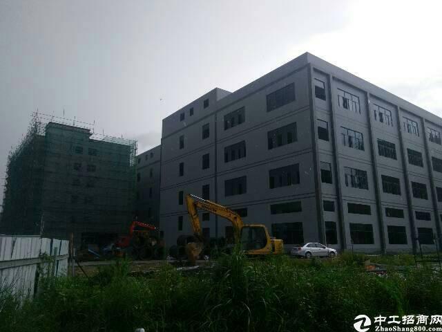 惠州沥林独门独院标准两栋厂房四层31000平米