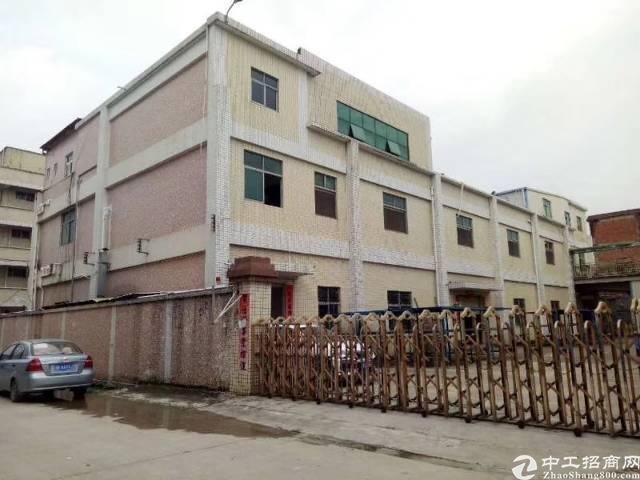 清溪独院 厂房1-2层3380㎡ 一楼高度5米