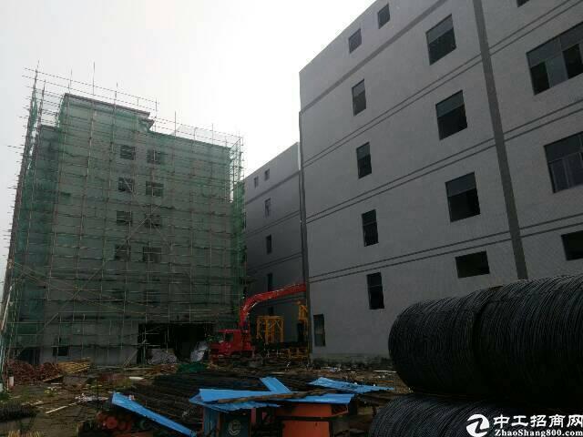 惠州沥林独门独院标准两栋厂房四层31000平米-图3