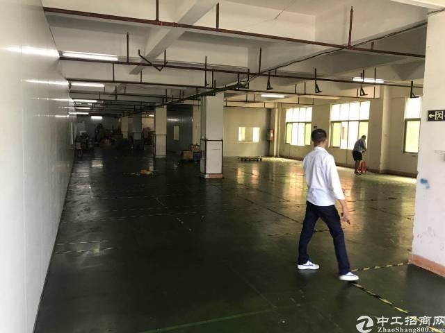 万江区标准独院厂房出租 3000平,空地大,可在大货车
