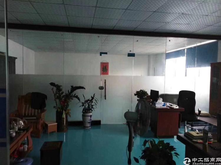 光明新出原房东红本独院精装办公室无公摊可办环评850平厂房