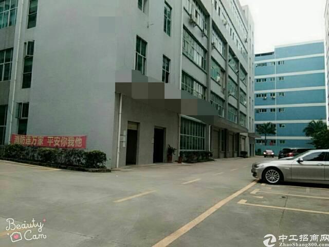 坪地低碳城厂房1400平米出租