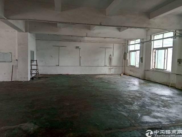 福永大洋田一楼550平标准厂房,水电到位,领包入驻,价格优惠
