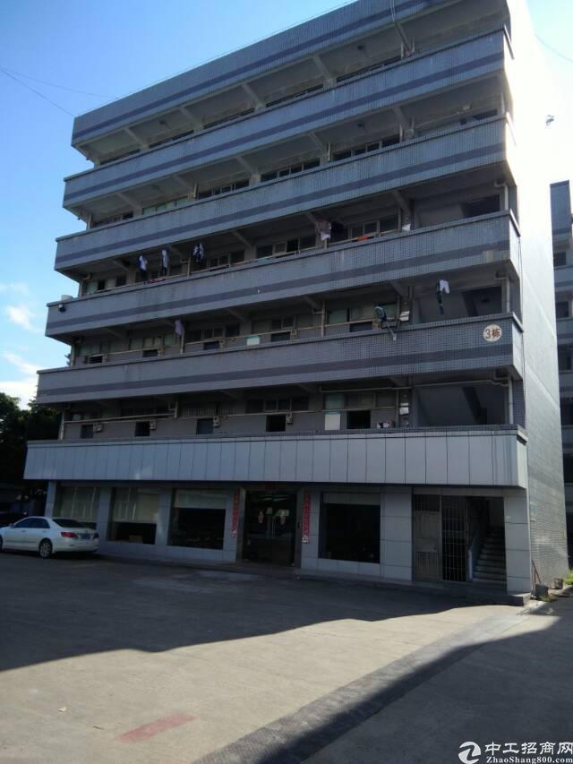 公明楼村3楼1300平米的厂房出租