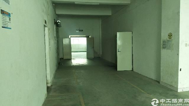 沙井步涌工业区新出装修厂房出租楼上890平
