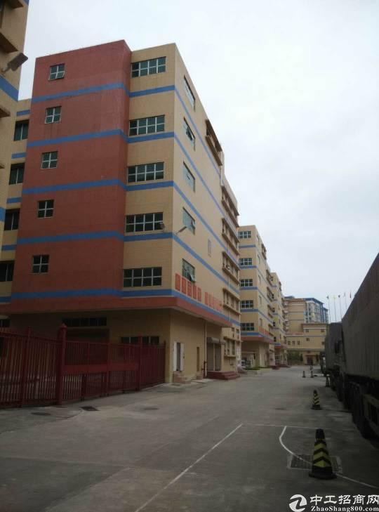 福永宝安大道附近大型工业园区1800平米整层带装修厂房出租-图5