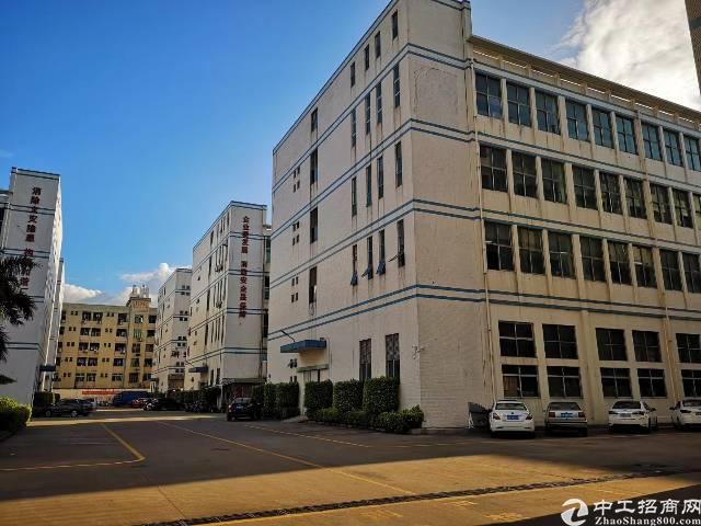 福永和平大型工业区独栋厂房3栋每栋6000平方大小分租