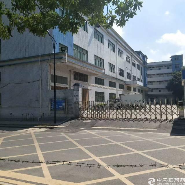 公明长圳1楼2750平方6米高带牛角厂房出租