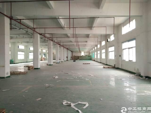 大岭山镇杨屋村新出一楼带装修厂房1628平米