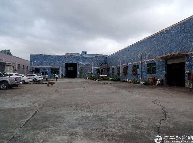 龙西独院钢构厂房6500平米,滴水6米