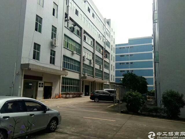 龙岗坪地1500平楼上精装修红本厂房整层出租带地坪漆喷淋