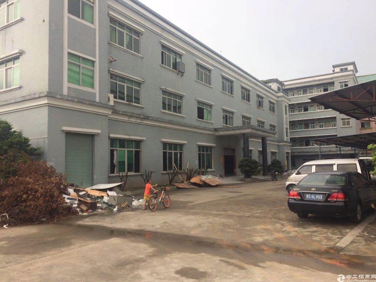 新出原房东标准厂房6200平方米