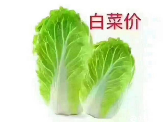 白菜价:惠州博乐县杨村镇,国土证25000