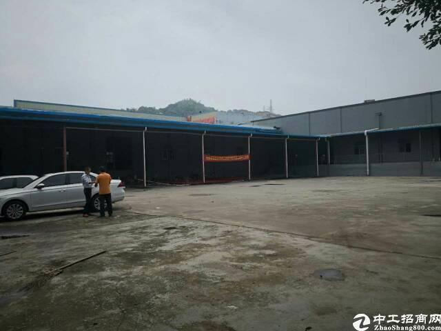 龙岗龙西新出独院大型钢构12500平,大小可分租