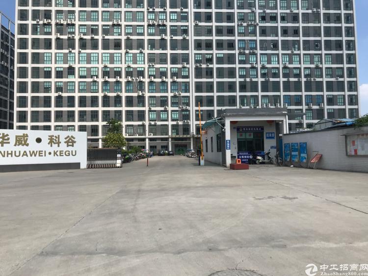 大岭山最便宜工业区厂房招租一楼滴水7米交通非常便利