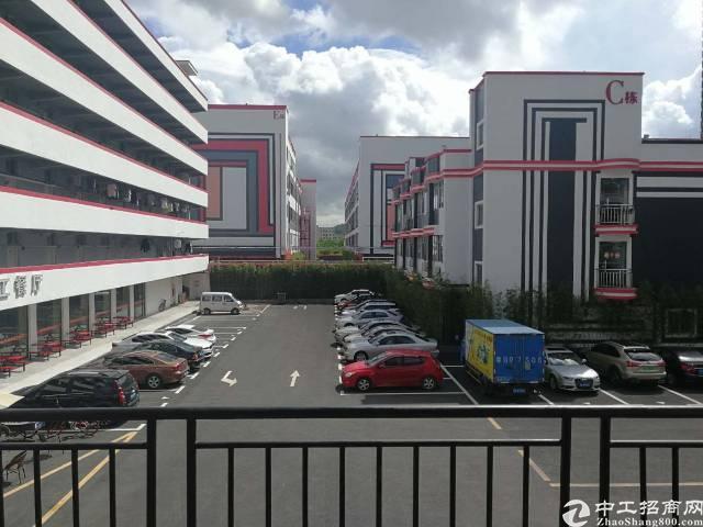 坂田杨美地铁口新出标准1楼1500平方楼上1500