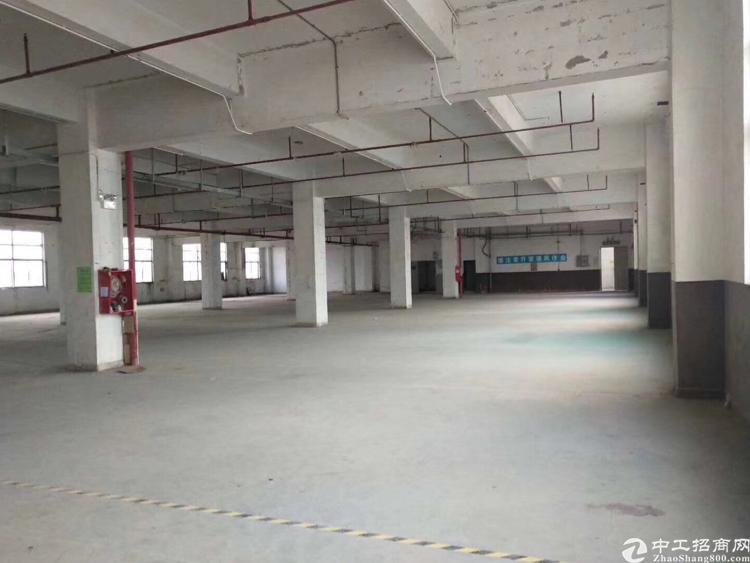 坪地原房东独院自用分租楼上整层1100平米,零公摊,仅16