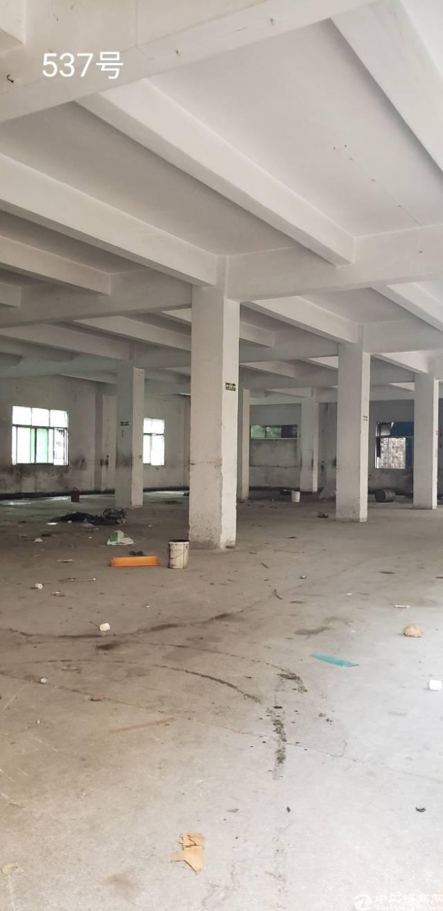 西乡臣田107国道边上新出厂房独门独院14000平米出租
