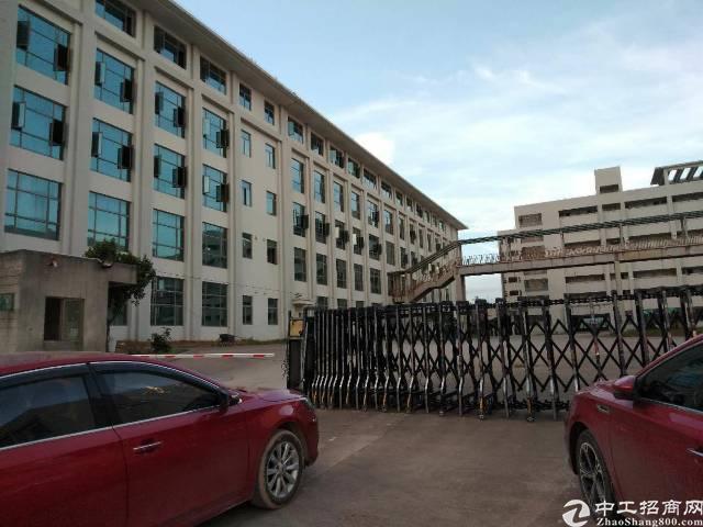 惠州大亚湾标准独院厂房30000平方空地10000平方有红本
