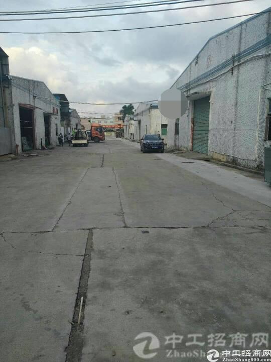 厚街镇白濠村实业客分租砖墙到顶钢构1000平,有隔热层