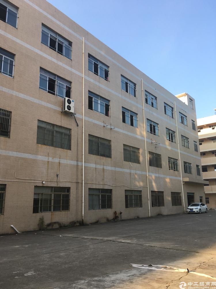 龙岗新出工业园厂房1100平方出租带办公室装修