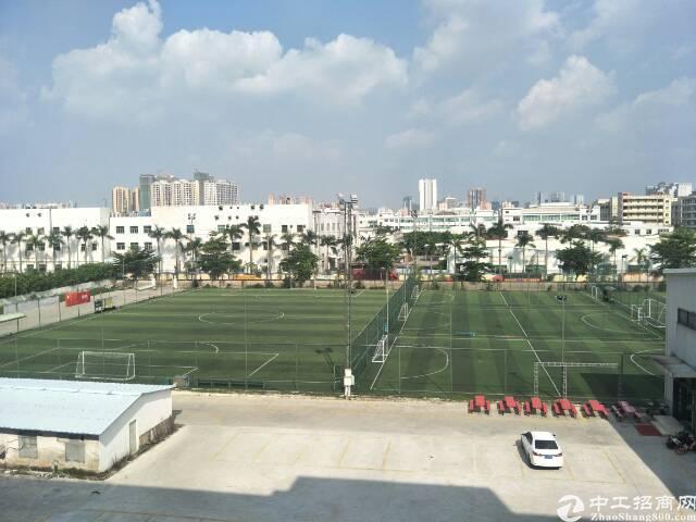 沙井沙一大型园区2楼650
