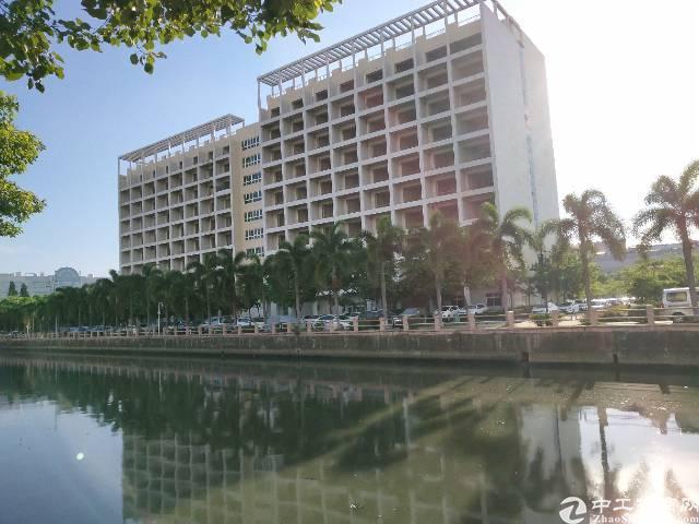 长安居民区全新3栋公寓包租