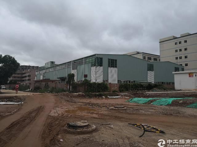 龙岗高速路口独院钢结构厂房6000平米出租大小分租 出租 9