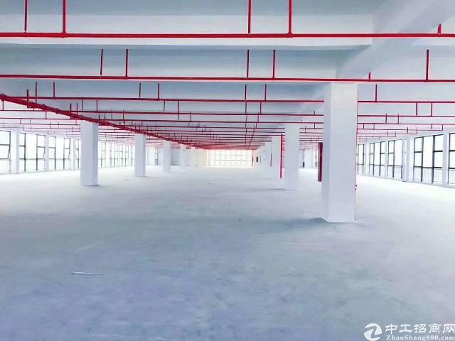 平湖新出一楼1500平方物流仓仓招租
