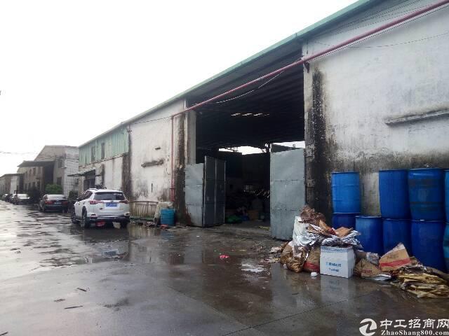 茶山镇新出厂房,交通便利人气旺
