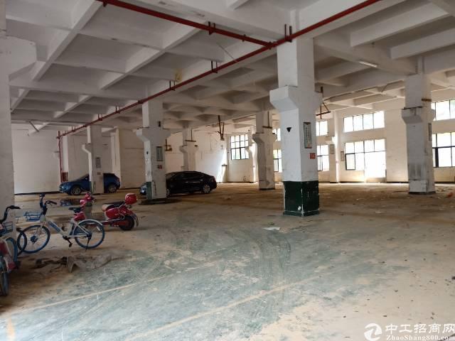 公明原房东厂房1-2层3600平方独院出租