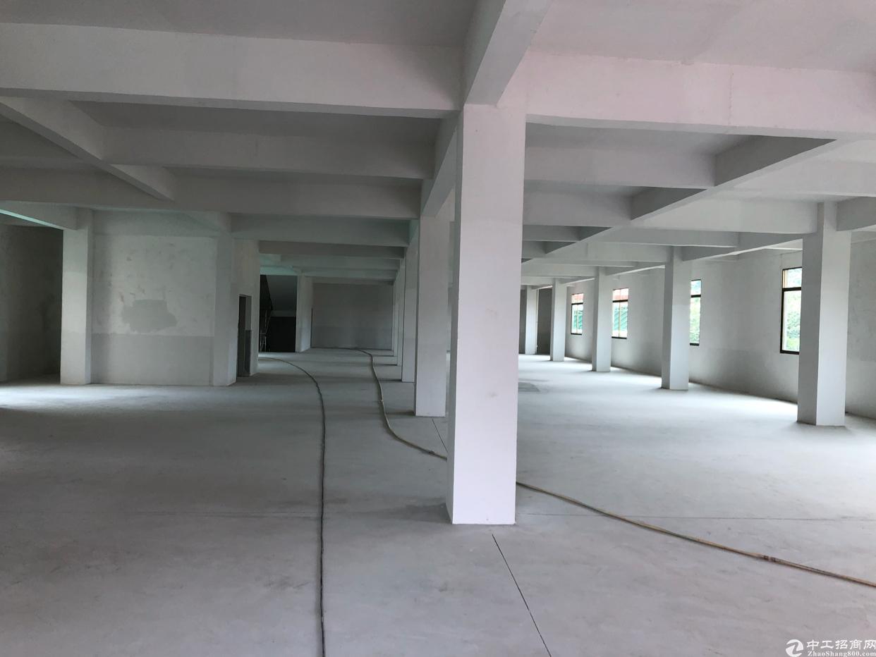 黄江镇龙见田村全新标准厂房3000平方