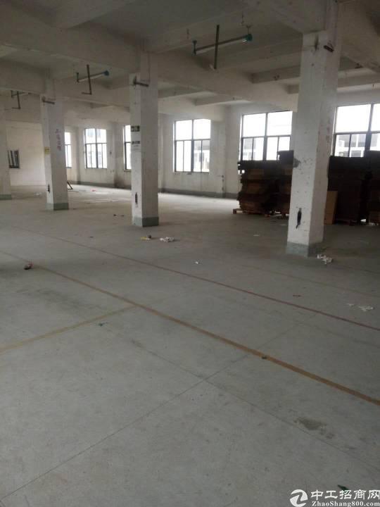 平湖黄金地段易招工,适合各种行业1300平米厂房招租!