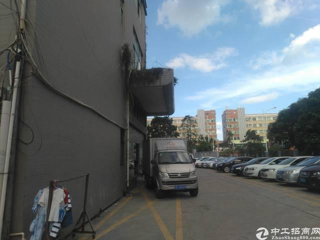 沙井和一新出一楼铁皮房200平方