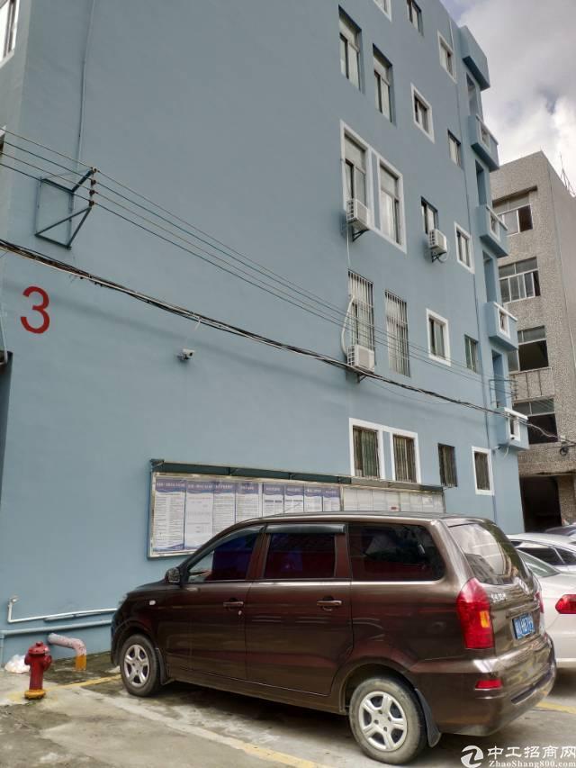 龙岗坪地主干道边上一楼1200平方高五米形象好