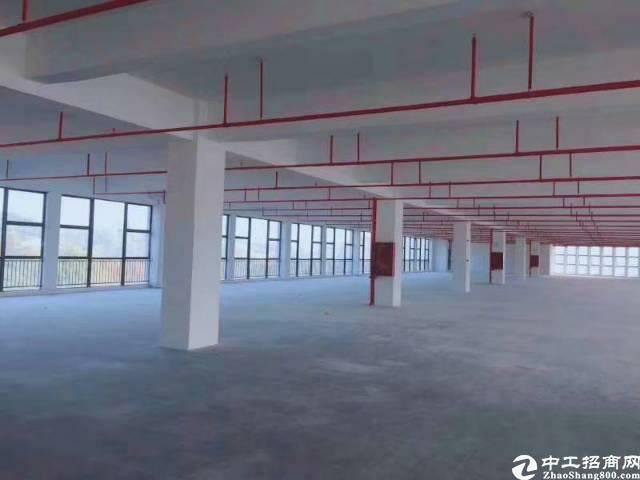 平湖新出一楼1500平方物流仓库招租