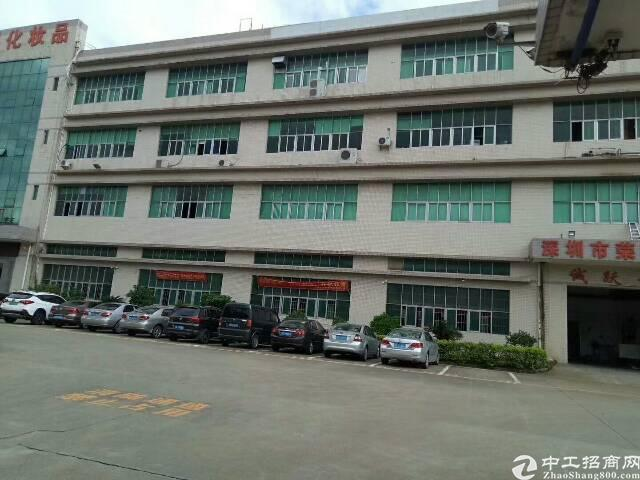 沙井西部工业区新出楼上带装修厂房700平