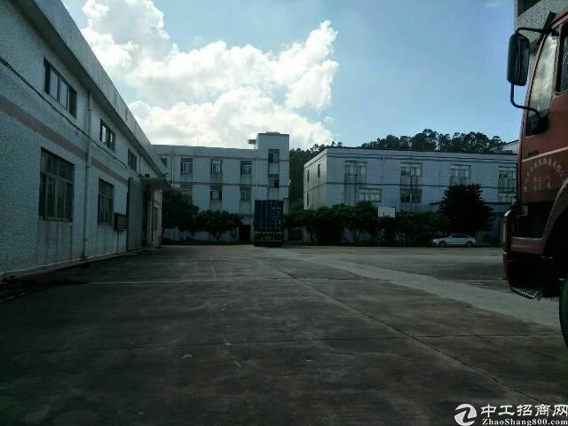 松岗物流园火爆招租20000平