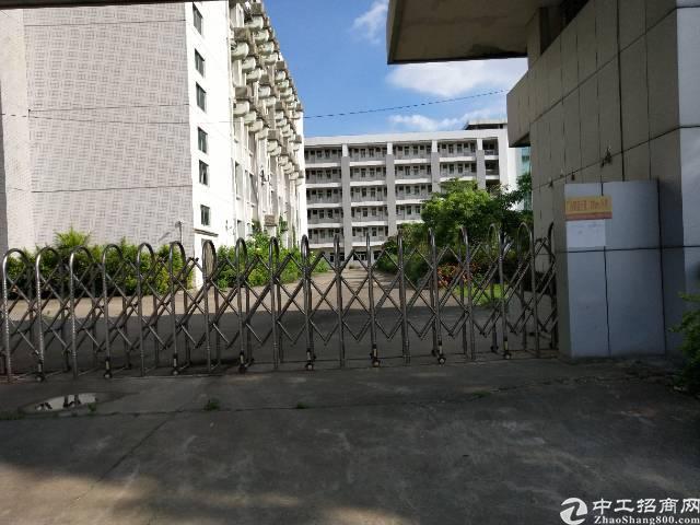 全新公寓,出租房一手房东整体出租