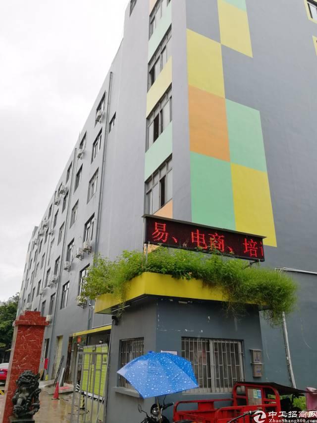 宝安西乡产业园区1000平精装办公写字楼低价出租