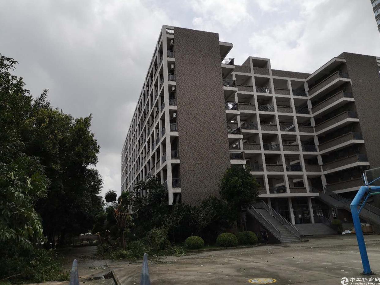 龙华清湖宝能科技园附近原房东独院厂房45000平方实际面积租