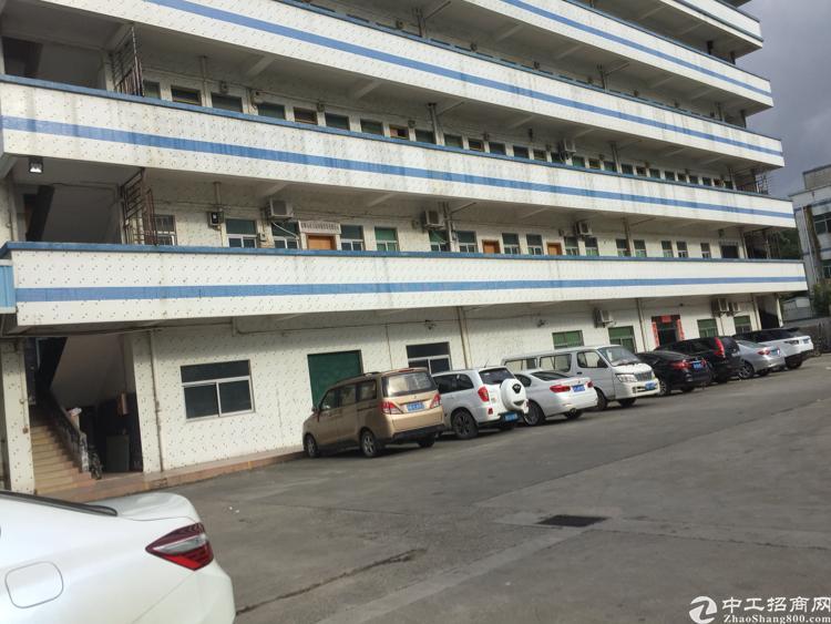凤岗镇金凤凰工业区楼上1500平带有装饰的办公室
