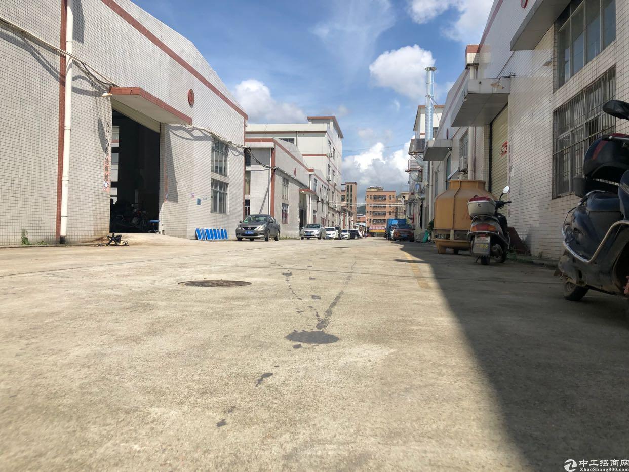 惠州新圩4800带牛腿钢结构厂房,可整租分租