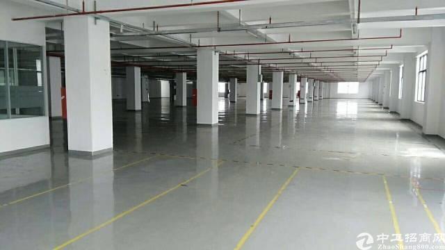 石岩松白路边楼上装修厂房2900平出租,红本厂房,大小可分租