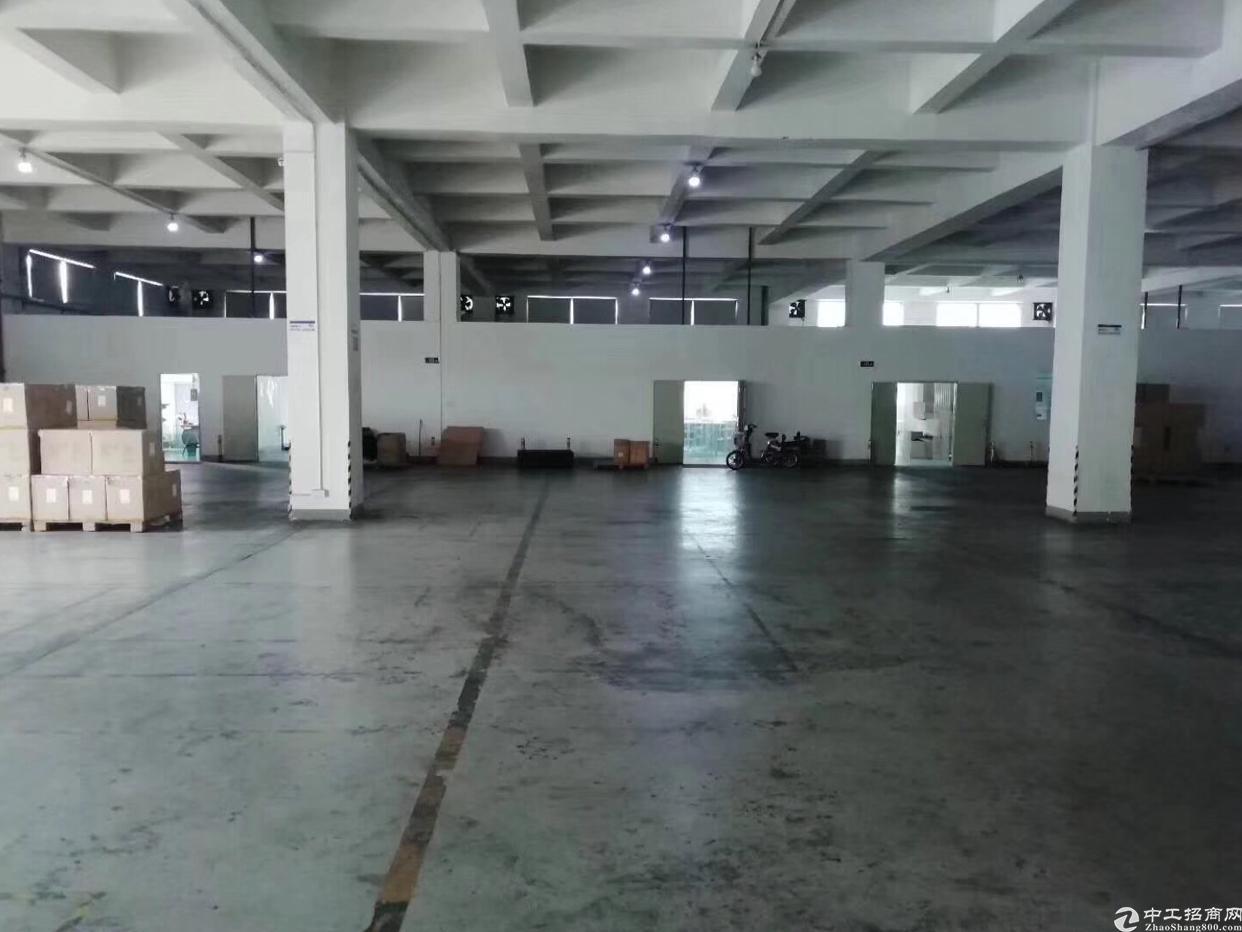 坪地2600平标准物流仓库