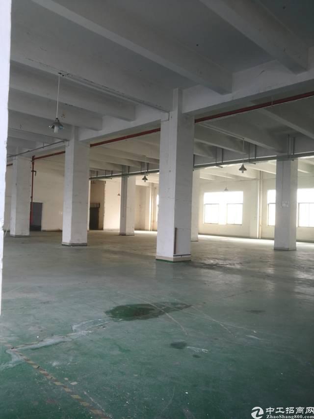 横岗大康一楼整层面积1600平米厂房招租