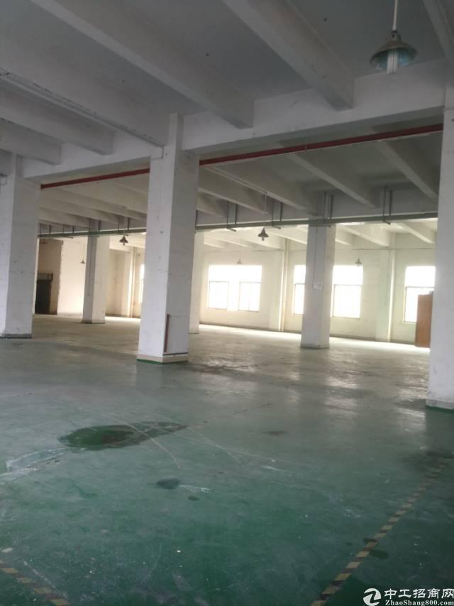 横岗荷坳地铁站附近一楼整层面积1500平米厂房招租